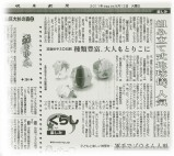 GIFU-NEWSPAPER